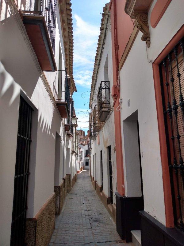CarmonaStreet.jpg