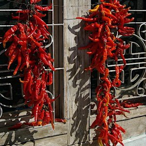 Bhutan - peppers drying
