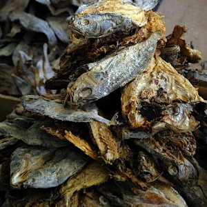 Dried fish, imported from India, Bhutan