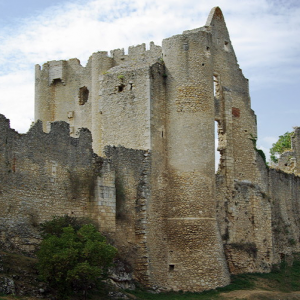 Angles-sur-l'Anglin, castle.png